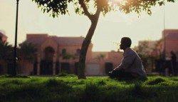 هدي النبي (صلى الله عليه وسلم) في صلاة الضحى