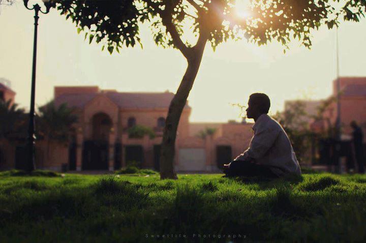 رجل جالس تحت شجرة مع شروق الشمس.